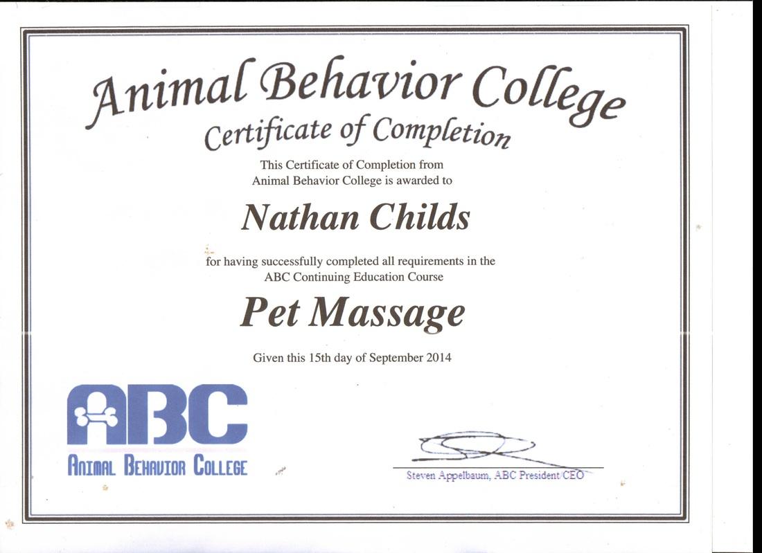 Trainer Good Dog Training Rochester Ny