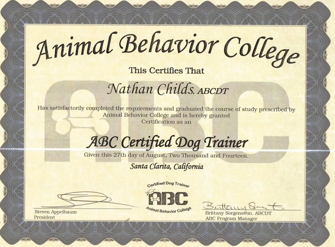 Trainer Good Dog Training Services